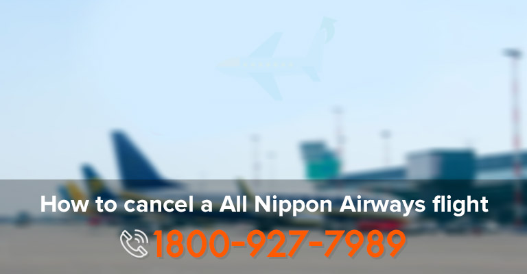 Cancel Nippon Airways Ticket