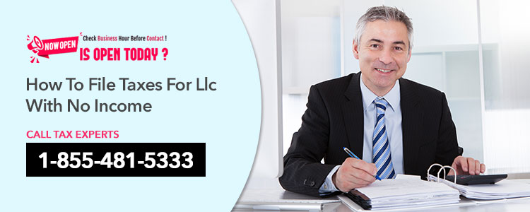 LLC File Tax With No Income